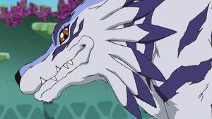 Garurumon smile
