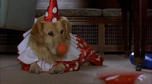 Air-bud-disneyscreencaps.com-124