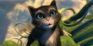Kitty Softpaws 2