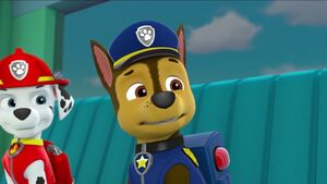 PAW Patrol Pups Save a School Bus Scene 9 Marshall Chase