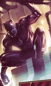 Black-Panther-Ultimates