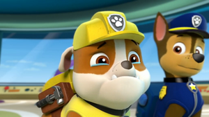 Paw Patrol Rubble, Are u Crying
