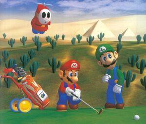 Mario and Luigi at Shy Guy Desert