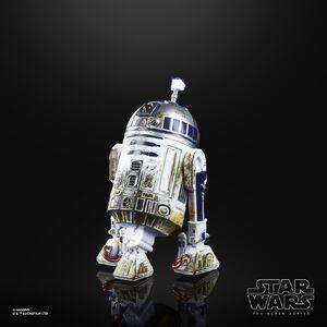 R2-D2 (Dagobah) - Black Series