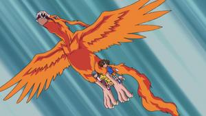 Birdramon carry Sora, Agumon and Taichi