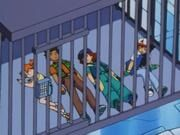 Ash, Brock, Misty and Ritchie caged