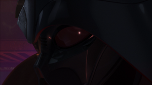 Vader disfigured