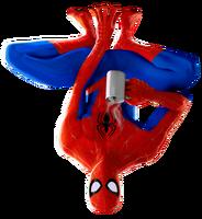 Peter B. Parker (Spider-Man- Into the Spider-verse)