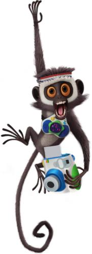 Steve the Monkey.png