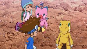 Taichi, Sora look at Biyomon & Agumon crying