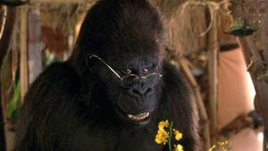 Ape (George of the Jungle).jpg