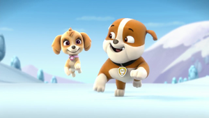 Paw Patrol Rubble says I'm too fast for you!