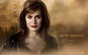 Esme-cullen-the-twilight-saga-new 1680x1050 29-wide.jpg