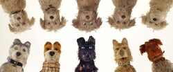 Isleofdogs-animationscreencaps.com-1093.jpg