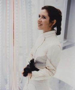 Princess-Leia-Organa-princess-leia-organa-solo-skywalker-29417768-414-496