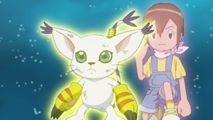 Gatomon and Hikari ready to fight