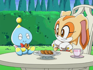 Sonic X Cream the Rabbit AND CHESSE CHAO EATING