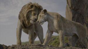 Lion King 2019 Screenshot 3219