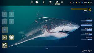Maneater mega bull shark by jack dev99 ddy1kpc-fullview