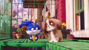 Captain Snowball and Daisy the Shih Tzu from The Secret Life of Pets 2