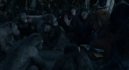 Caesar's Council of Apes