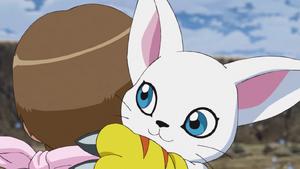 Gatomon hugs Hikari