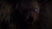 Jordan Sands as Werewolf