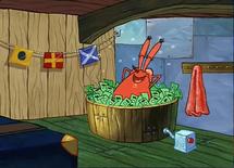 Mr. Krabs bathing in money