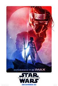 Skywalkers poster