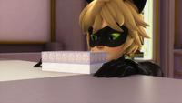 Animan - Cat Noir 07