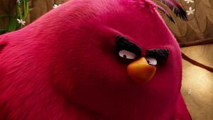Puzzle12-Angry-Birds-Terence