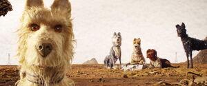 Isleofdogs-animationscreencaps.com-1218