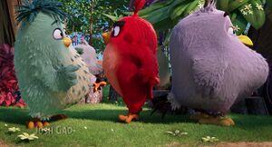 Angry-birds-disneyscreencaps.com-540