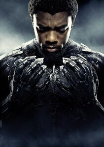 T'Challa-Black-Panther Poster