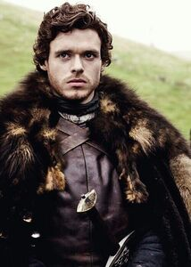 The Young Wolf in Winterfell