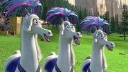 Madagascar3-disneyscreencaps com-5812