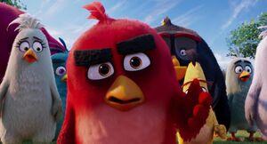 Angry-birds-disneyscreencaps.com-7600