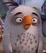 Cyrus-the-angry-birds-movie-0.85.jpg