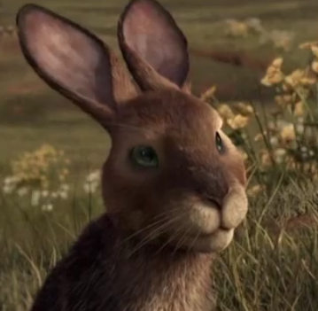 Hazel (Watership Down)