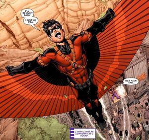Red Robin 0043