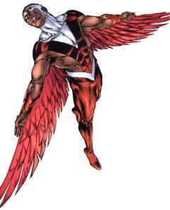 Falcon 002