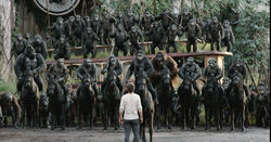 Luca, Grey, Rocket, Koba, Caesar, Maurice, Stone, Ash & Blue Eyes on horseback