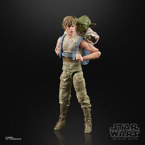 Luke and Yoda - Black Series