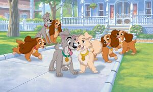 Lady and the Tramp 2 Promotional Images - 10