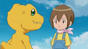 Agumon and Hikari