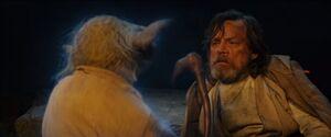 Yoda and Luke The Last Jedi
