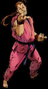 Dan Hibiki (SFA3)