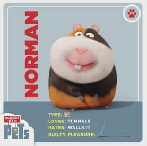 Norman card