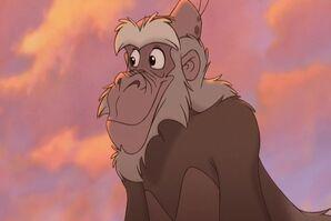 Tarzan2 847.jpg