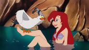 Scuttle on Ariel's new leg